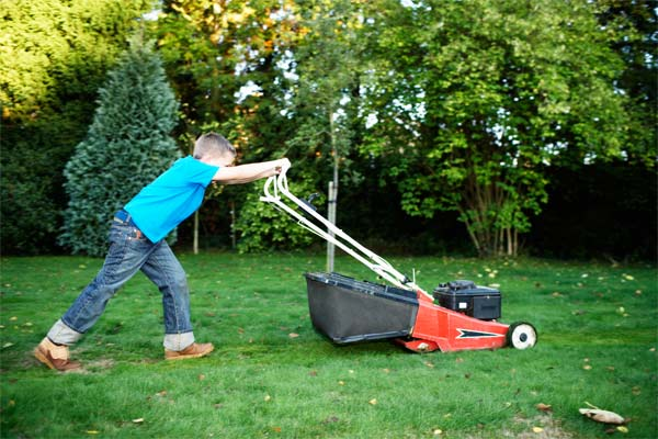 Lawn Mowing Stafford VA