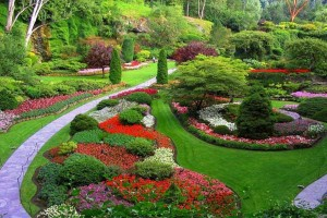 free-download-hd-beautiful-summer-garden-landscape-design-facebook-1366x768