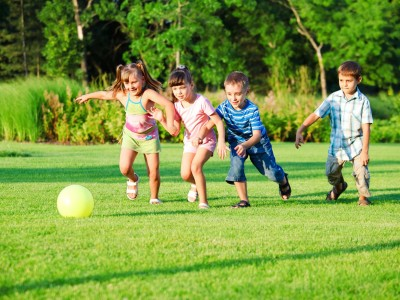 top-lawn-care-tips